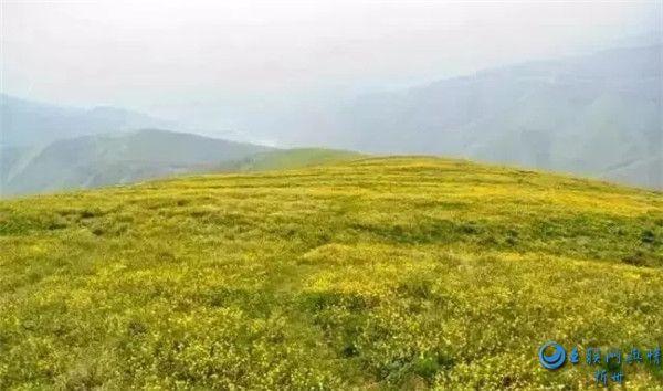 世人最爱的朝拜之地――五台山