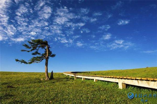 宁武芦芽山――山西一个不太知名的景区,景色却出奇的美