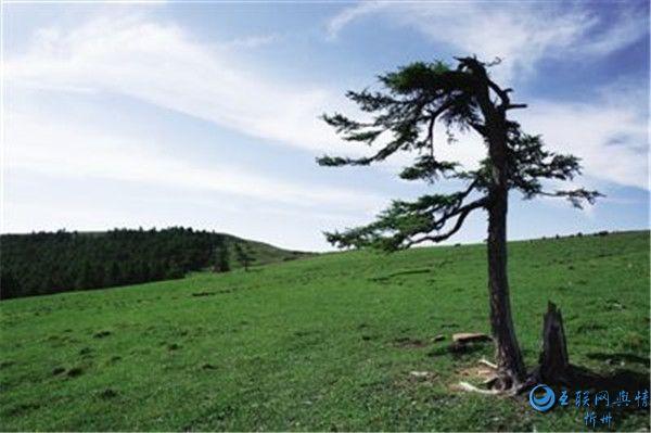 山西宁武:长城外关的独特风光