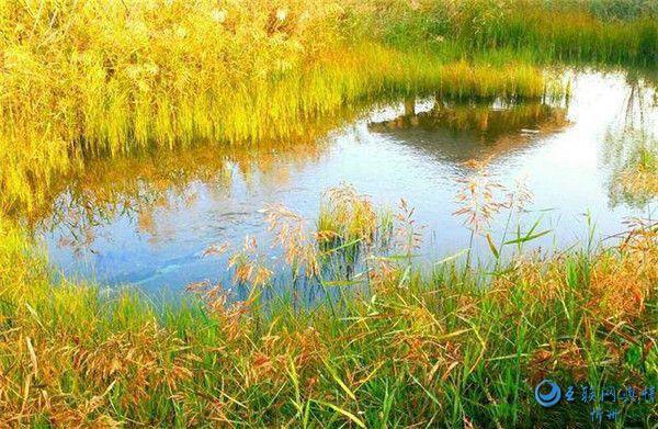 山西定襄凤凰山――秋天那束光线 那片色彩
