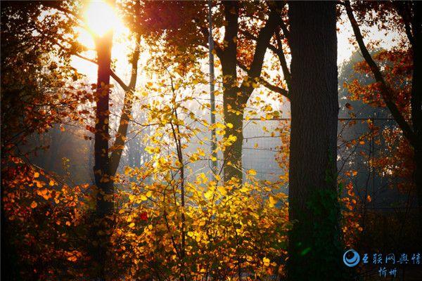 寻找秋天里的诗与远方