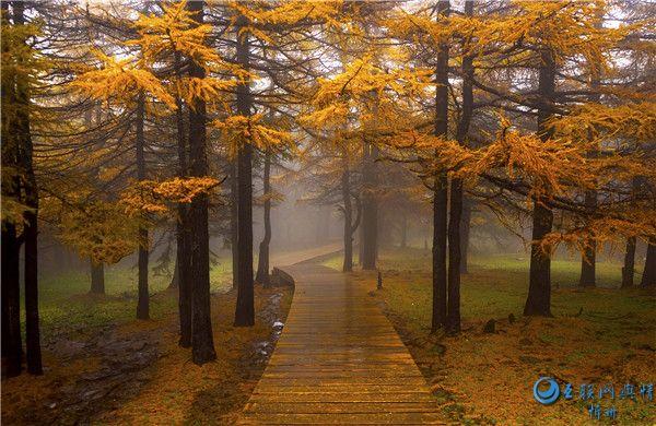 山西有座汾河源头,秋季层林尽染,风景如画!