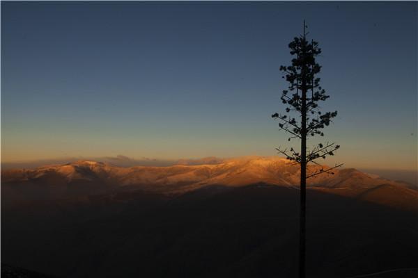 五台山的美 想与你分享