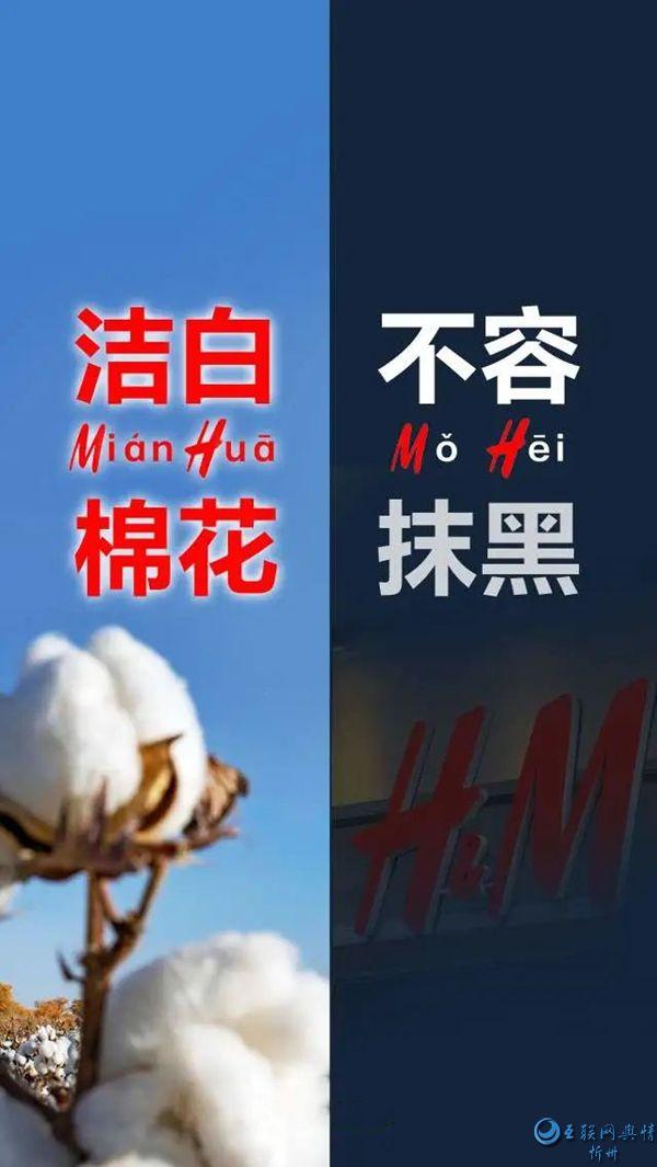 不容抹黑!关于新疆棉花的6个事实