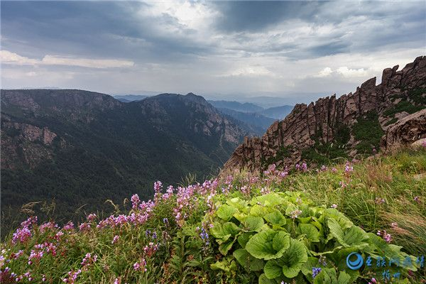 芦芽山:北方的香格里拉