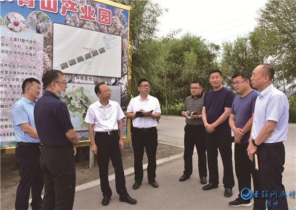 代县县委书记张生明调研督导中央环保督察交办问题整改工作